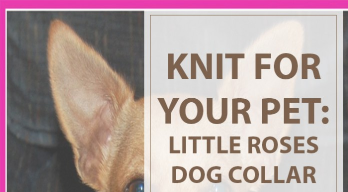 Knitting Patterns For Dogs Little Roses Collar