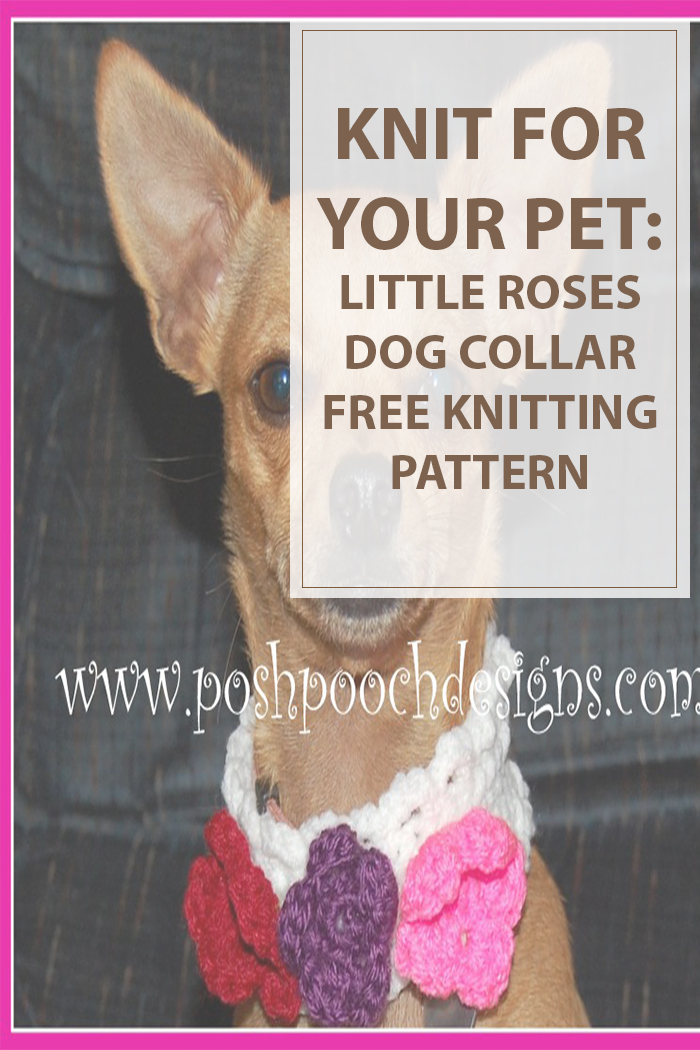 Free Knitting Patterns For Animals - Magazine cover