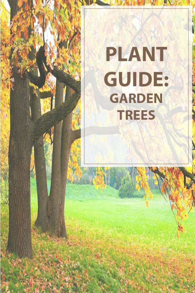 Plant Guide Garden Trees
