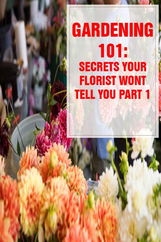 26 Secrets Your Florist Won't Tell You Part 1