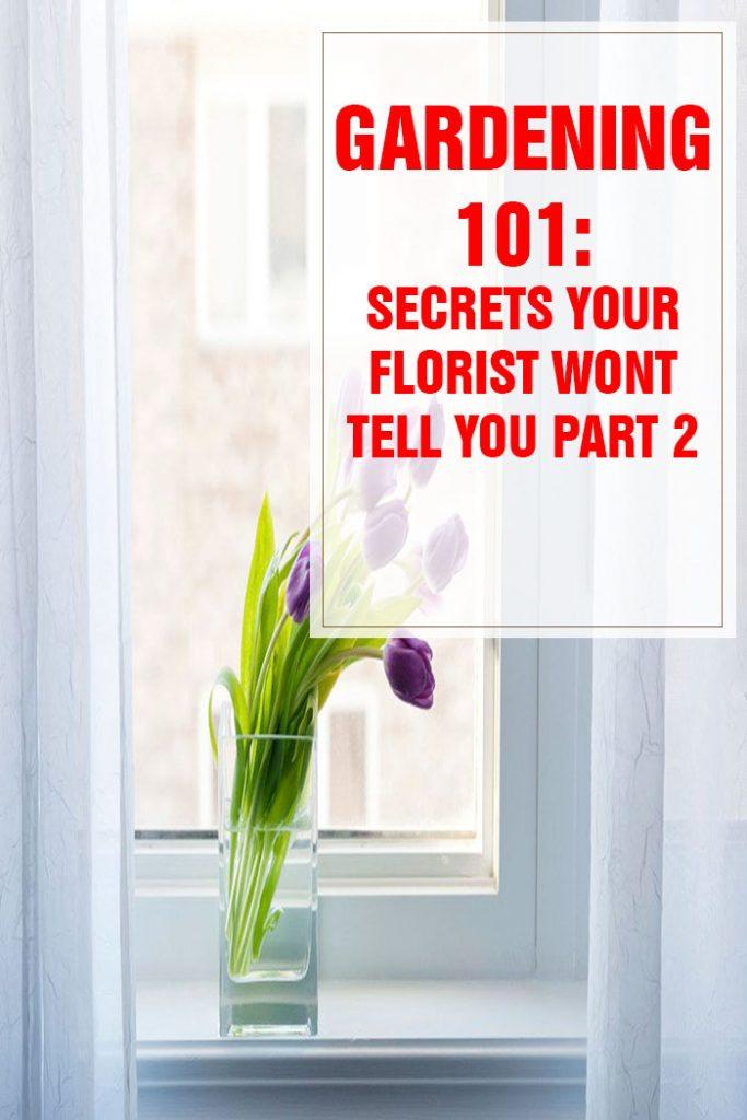 26 Secrets Your Florist Won't Tell You Part 2