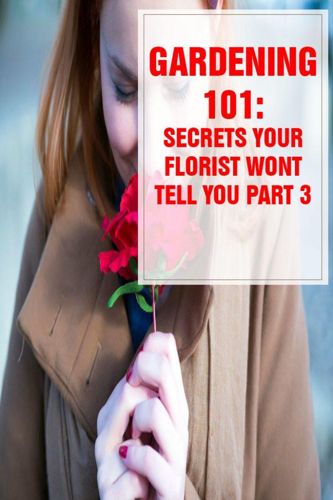 26 Secrets Your Florist Won't Tell You Part 3