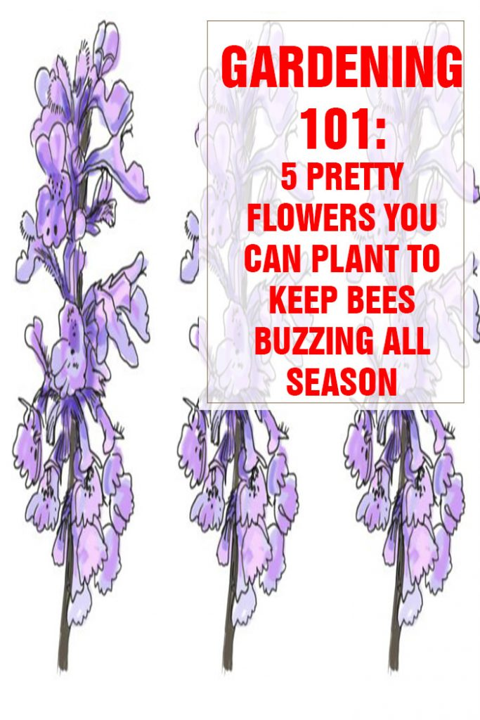 5 Pretty Flowers You Can Plant To Keep Bees Buzzing All Season