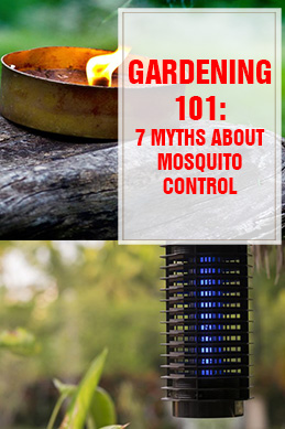 7 Myths About Mosquito Control