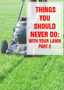 Things You Should Never Do With Your Lawn Part 1 THUMP