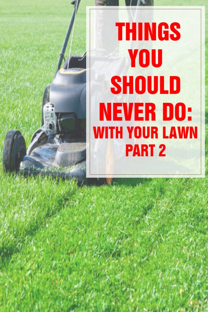 Things You Should Never Do With Your Lawn Part 2