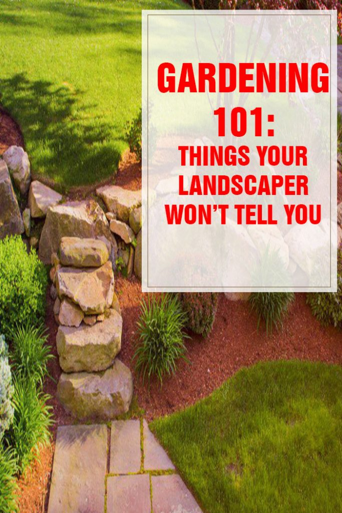 Things Your Landscaper Won't Tell You Part 1