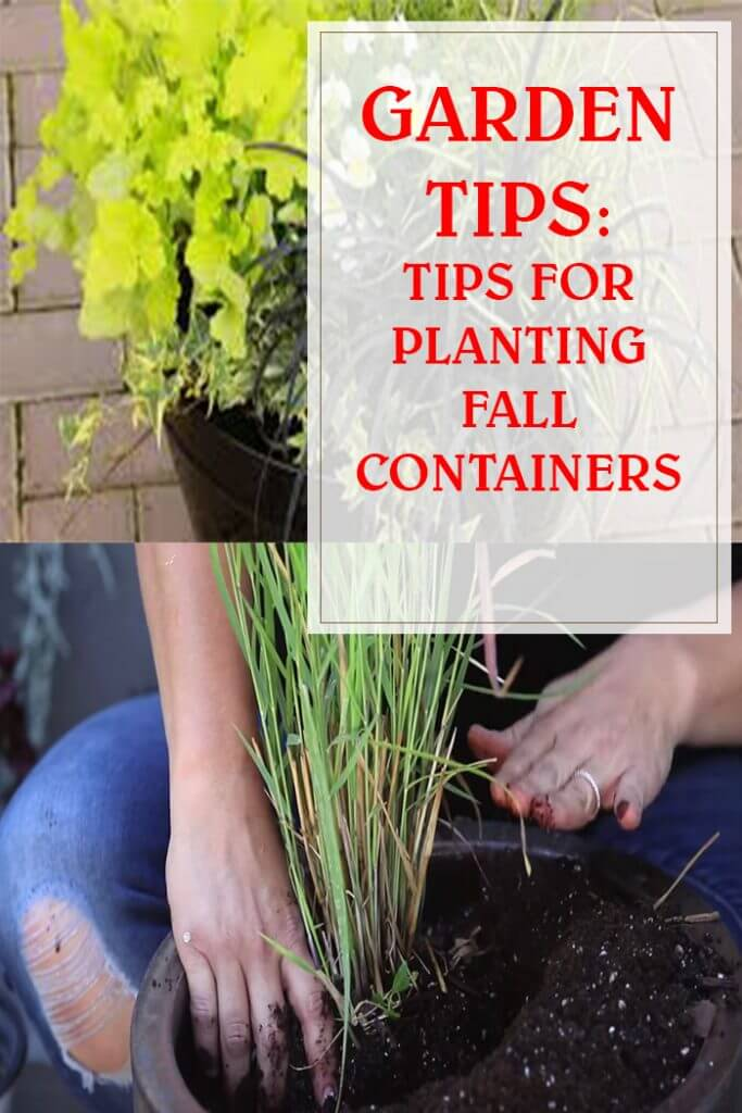 Tips For Planting Fall Containers