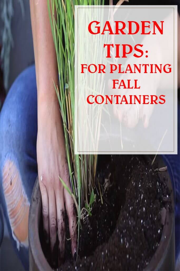 Follow These Tips For Planting Fall Containers